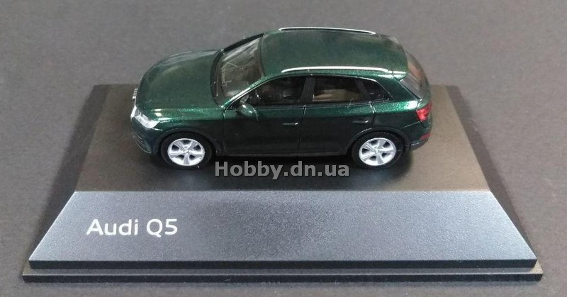Other NA AUDI5011605621 Audi Q5 (Azores Green)